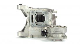 Elaborazione carter cilindro Malossi Piaggio Zip SP