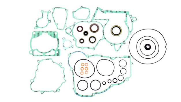 Kit guarnizioni motore Beta RR 250 300